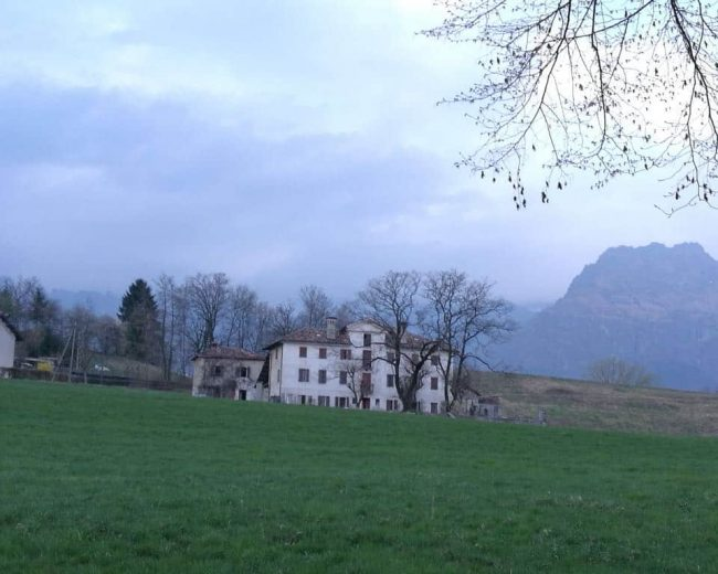 Anello VellaiCart VisitFeltre 6
