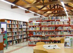 interno biblioteca feltre